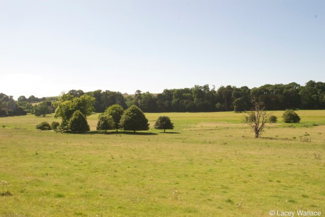 View of site from the NE across the Nailbourne. Bishopsbourne Church extreme left. Roman buildings extreme right behind the shrubs and in front of the line of trees